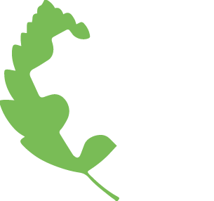 MEMBER OF LEATTHER WORKING GROUP